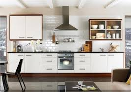 Modern Kitchen Cabinets Ikea Delighful Green And White Rectangle