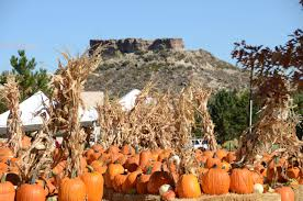 Larkspur Pumpkin Patch by Harvest Festival U2013 Shining Light Events Inc