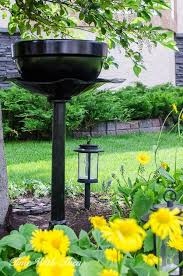 Outdoor Patio Plant Stands by 93 Best Gardening Outdoor Plants Images On Pinterest Outdoor