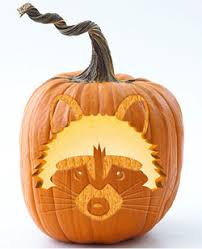 Steelers Pumpkin Carving Stencils Free by Free Pumpkin Patterns 13 Free Pumpkin Carving Printable Sites