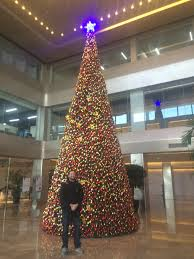 Christmas Tree Cataract Seen In by Old Master Middle Kingdom 在中国教英语 Teaching English In China