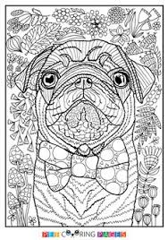 Free Printable Pug Coloring Page Sidney Available For Download Simple And Detailed Versions