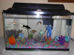 Spongebob Aquarium Decor Set by 122 Best Pets Here Fishy Fishy Images On Pinterest Aquarium