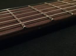 Stainless Frets Whats The Deal