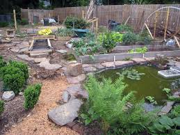Easy Backyard Pond | Decor References How To Build A Backyard Pond For Koi And Goldfish Design Building Billboardvinyls 10 Things You Must Know About Ponds Diy Waterfall Garden Pictures Diy Lawrahetcom Making Safe With Kits The Latest Home Part 2 Poofing The Pillows Decorations Interesting Gray White Ornate Rock Gorgeous Backyards Beautiful 37 A Pondless Blessings Simple House Small