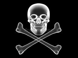 Download Skull And Crossbones X Ray Silhouette Stock Illustration