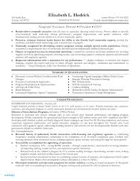 Non Profit Ceo Resume Examples Uk Essay Writers Nottingham Who Leaped Example