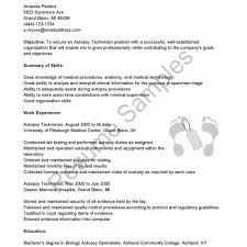 Unique Resumes Sample 32 Wonderful Resume En Ingles O5l