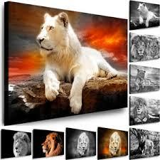 details zu leinwand bilder tiere wandbilder löwe raubtier kunsdrucke wohnzimmer