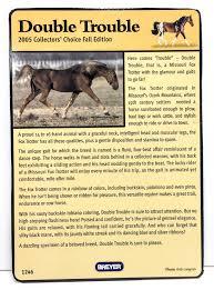Decorator Pattern C Logging by Identify Your Breyer Missouri Fox Trotter