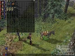 dungeon siege i dungeon siege heaven why a mule