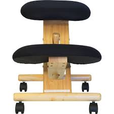 Tempur Pedic Office Chair Tp8000 by Tempur Pedic Office Chair Manual 100 Images Furniture Rug