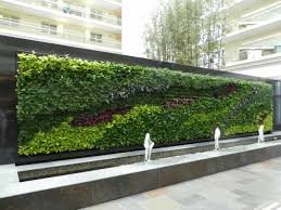 Livingwalls Or Greenwalls | New Leaf Interiors | E X T E R I O R ... Home Vegetable Garden Tips Outdoor Decoration In House Design Fniture Decorating Simple Urnhome Small Garden Herb Brassica Allotment Greens Grown Sckfotos Orlando Couple Cited For Code Vlation Front Yard Best 25 Putting Green Ideas On Pinterest Backyard A Vibrantly Colorful Sunset Heres How To Save Time And Space By Vertical Gardening At Amazoncom The Simply Good Box By Simplest Way Extend Your Harvest Growing Coolweather Guide To Starting A