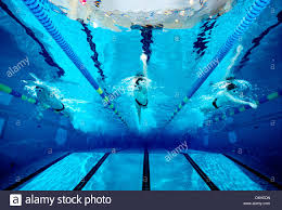 Underwater Photograph Of A Boys High School Swim Team Practicing In An Olympic Size Swimming Pool