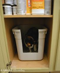 Cat Litter Carpet by Yes This Really Is A Post About A Cat Litter Box