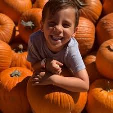 Pumpkin Patch Daycare Ct by Abc Children U0027s Center At San Diego 48 Photos U0026 27 Reviews
