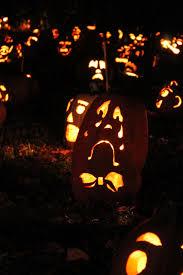 Great Pumpkin Blaze by Shayla Who The Great Jack O U0027lantern Blaze