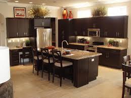 Catchy Dark Cabinet Kitchen Designs Decor Interior Bathroom Fresh On Gallery