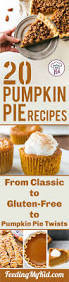 Crustless Pumpkin Pie Slow Cooker by Pumpkin Pie Recipe Ideas Try All Of These Different Varieties