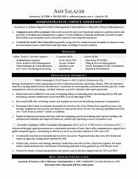 Administrative Assistant Resume Summary Inspirational Examples Beautiful
