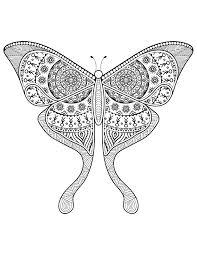 dessin pour imprimer dessin pour adulte délicat papillon à imprimer difficile