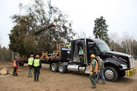 Kenworth T880 To Deliver US Capitol Christmas Tree - Truck News Dog Mascot Logo Esport Sport Youtube Wally The Green Monster Wikipedia Mack Truck Parts Tps1114 By Richard Street Issuu General Tramissions Transfer Cases And Dodge Cartruck Bonnet Mascot Wwwjustpartscomau Amazoncom Forum Novelties Plush Monkey Costume Brown Trucks For The Bee Butterfly Festival Is Full Of Free Fun In Okoboji Eone Fire On Twitter Cgrulations To Elgin Minnesota