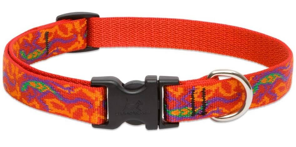 Lupine Go Go Gecko Adjustable Dog Collar - 13-22in