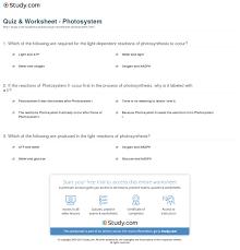 Quiz & Worksheet system