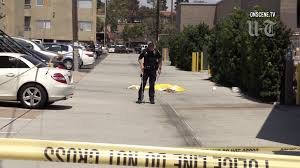 Officials Release Name Of Woman Run Over By Big Rig - The San Diego ... Pink Taco Takes Over Trader Vics In The Pearl District Eater Portland Event Motoring San Diego Ca New Used Cars Trucks Sales Service Water Truck Equipment For Sale Equipmenttradercom 2019 Ford Ranger Tour And For On Cmialucktradercom Lexus Serving Jeep Classics Near California 2015 Ducati Scrambler Urban Enduro Cycletradercom Courtesy Chevrolet The Personalized Experience Hino Dump Cstruction
