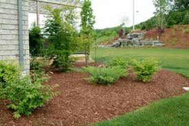 The Benefits of Mulch in your Garden Deerwood Landscaping