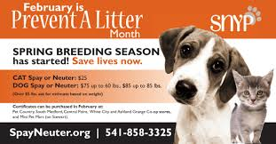 Prevent A Litter - Spay/Neuter Your Pet (SNYP) | Spay/Neuter Your ... Pets Barn Petsbarnstore Twitter Amazoncom Petmate Pet Dog Houses Supplies Salem Supply Archives Best Coupons Magazine Thundershirt We Just Changed Walks Forever 25 Memes About And Kid 10 Off Lowes Coupon Rock Roll Marathon App Kh Products Selfwarming Crate Pad Xsmall Tan Robbos 20 Everything Instore Dandenong South The Barn From Charlottes Web Is On Sale Business Insider