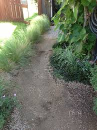 Pea Gravel Patio Plans by How To Build A Stable Pea Gravel Path Lush Landscapes For Tough