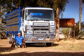 OFFICIAL WEBSITE OF DAIMLER TRUCKS ASIA Welcome To Ranch Trucks Trailers Cattle Bodery Wilson Livestock Pinterest Cars New Ud For Sale Vcv Rockhampton Central Queensland The Trucknet Uk Drivers Roundtable View Topic Gilders Pin By Larry Murray On Cattle Trucks Mini For Suzuki Mitsubishi Daihatsu Subaru Mazda 12002 Road Train Highway Replicas Transport Vehicles Horsezone Page 1 Newark Scanias Geary Operation Arod Redneck Lewis Family Farm Deraad Trucking