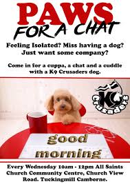 Are Christmas Trees Poisonous To Dogs Uk by K9 Crusaders Dog Welfare