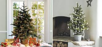 Potted Christmas Tree by 7 Alternative Christmas Trees For Tiny Homes 4betterhome
