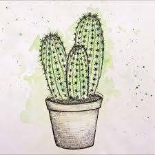 Best 25 Cactus Drawing Ideas On Pinterest Art
