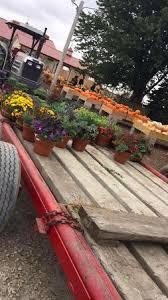 Dollingers Pumpkin Farm Minooka Il by Heap U0027s Giant Pumpkin Farm Minooka All You Need To Know Before