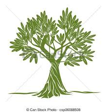 Vector Color Olive Tree
