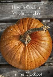 Cinderella Pumpkin Seeds Australia by How To Cook A Pumpkin The Happy Housewife Cooking