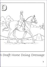 Breyer H Is For Horse Coloring Book With Stickers 033091 Details