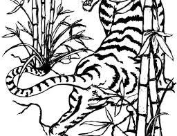 Beautiful Bamboo Tree Tattoo On Arm