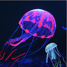Jellyfish Mood Lamp Amazon by Jellyfish Fish Tank Jellyfish Fish Tank Suppliers And