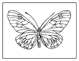 New Butterfly Coloring Pictures KIDS Design Gallery