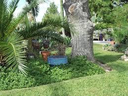 Rock Oak Deer Garden Tour San Antonio Style Cactus Marty s