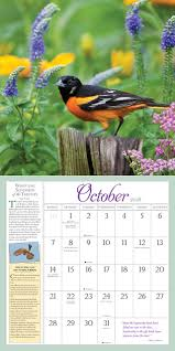 Amazon.com: Audubon Birds In The Garden Wall Calendar 2018 ... Introduced Birds Birds In Backyards Best 25 Bird Watching Ideas On Pinterest Pretty Backyard 510 Best Birds Of A Feather Images Blackwinged Stilt 2016 Results Aussie Count Rainbow Lorikeet Evolve Their Behavior Without Chaing Bodies The To Feed Or Not To Audubon Female Blackbird Front Yard And Landscaping Ideas Designs Country Garden Striped Honeyeater Inland E Australia My
