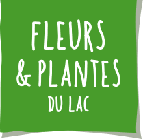 fleur et plante du lac fleurs et plantes du lac spécialiste de la jardinerie à annecy