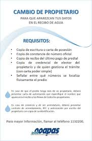 Formato Mexico Simple Poder Carta
