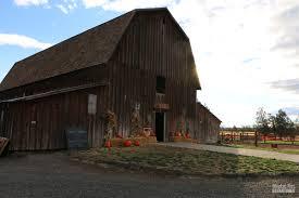 Pumpkin Patch Medford Oregon by Oregon Archives Blanket Fort Adventures