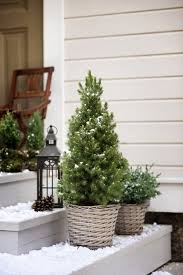 Can Birch Advent Winter Wonderland Terrace Entrance Christmas Ideas Xmas