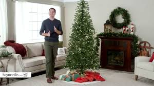 Pre Lit Pencil Christmas Trees by 7 5 Ft Delicate Pine Slim Pre Lit Christmas Tree Product Review